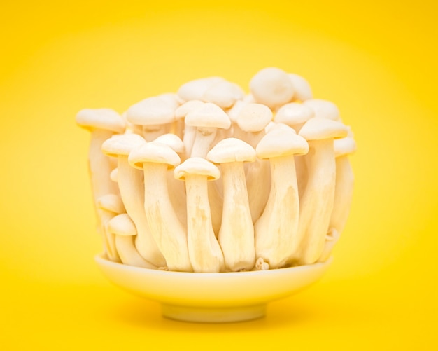 Mushrooms on white plate over yellow Free Photo