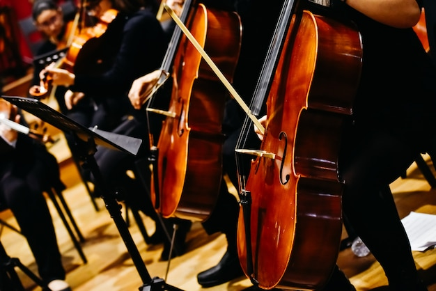 Musicians during a classical music concert, playing violins. Premium Photo