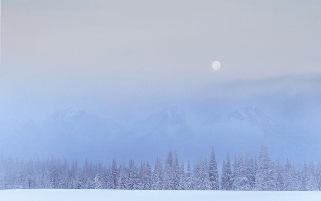 Misterioso paesaggio invernale maestose montagne in inverno. Foto Gratuite