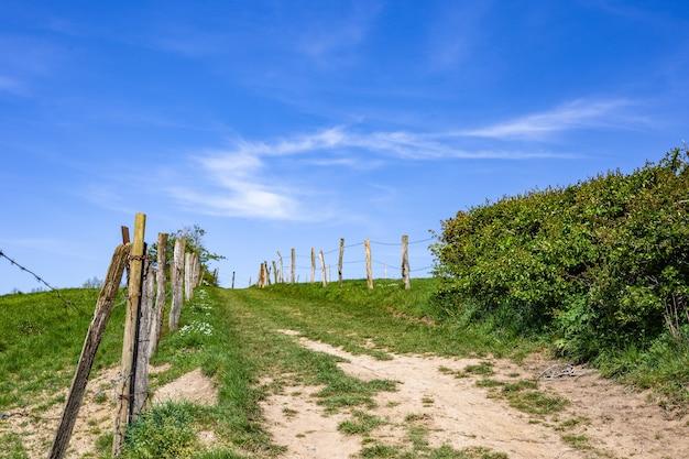 昼間の緑の農地の狭い経路 無料写真