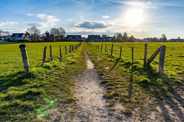 青い空の下の芝生のフィールドの真ん中にある狭い道 無料写真