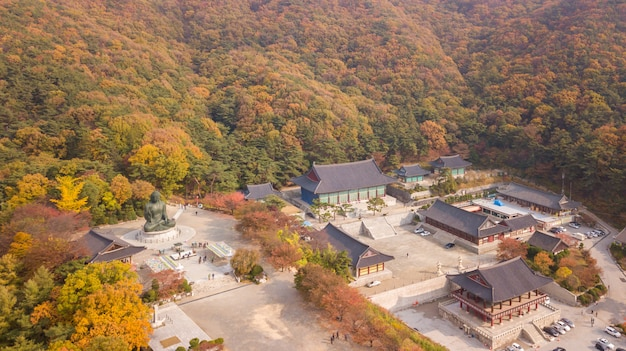Nationnal korean park with temples Premium Photo