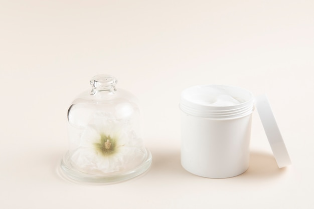 Natural body butter layout with plain background Free Photo