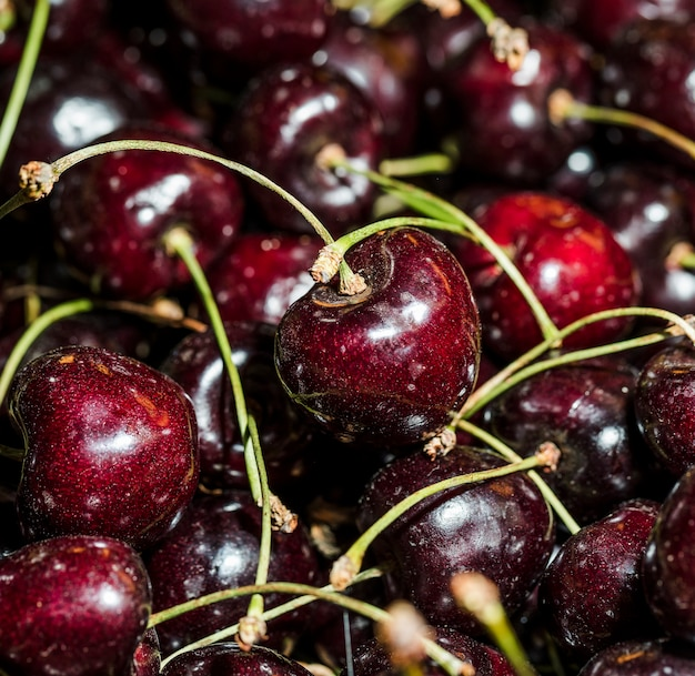 Natural cherries for sales in market Free Photo