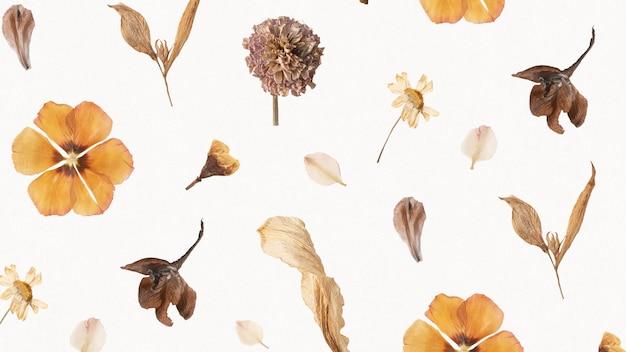 자연 말린 꽃 벽지 패턴 무료 사진
