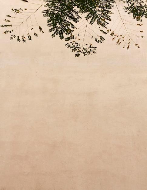 Foglie naturali e priorità bassa della parete dello spazio della copia Foto Gratuite