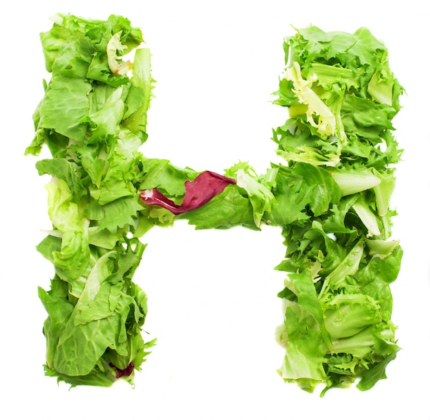 natural letter h photo | free download