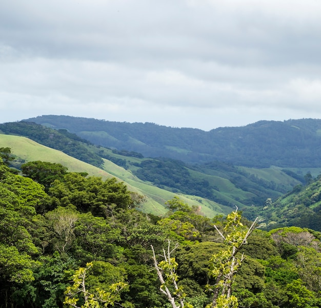 Natural peaceful valley and mountain in costa rica Free Photo