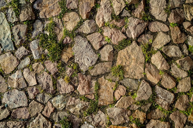 Natural stone pavement with small grass and plants between the stones Premium Photo