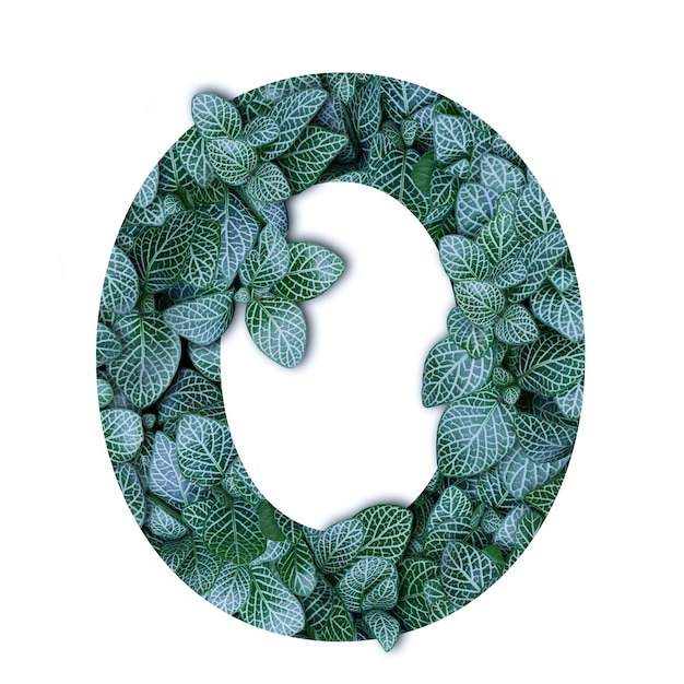 Nature concept alphabet of green leaves in number zero shape Premium Photo
