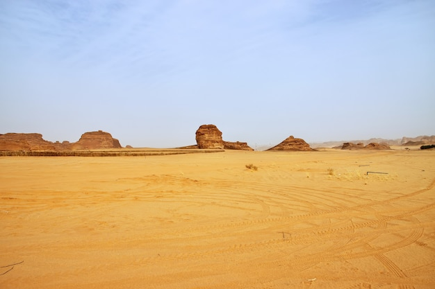 砂漠の自然はアルウラサウジアラビアを閉じます Premium写真