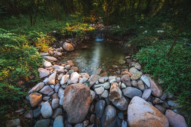 山と森を背景に新鮮な水の流れの自然景観 Premium写真