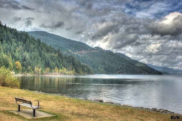 Nature Scenic Bench Peaceful Landscape Relaxing Photo