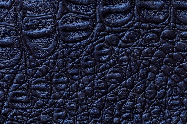 Navy blue leather texture background, closeup Premium Photo