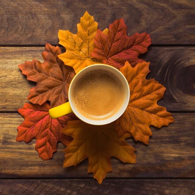 f451a6b7dd7 Neatly set autumn leaves around coffee mug Photo | Free Download