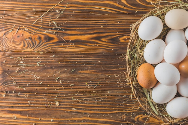 Nest with chicken eggs Free Photo