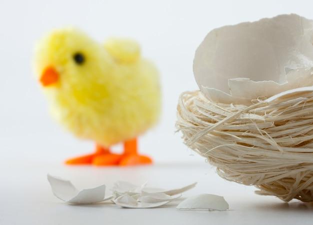 卵殻のひび割れとおもちゃの鶏の巣 Premium写真