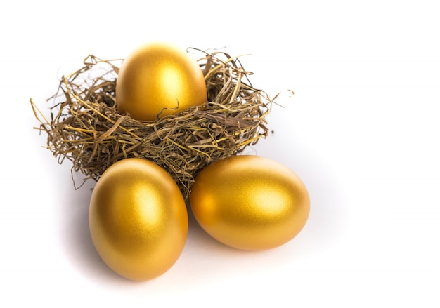 Nest with golden eggs Free Photo