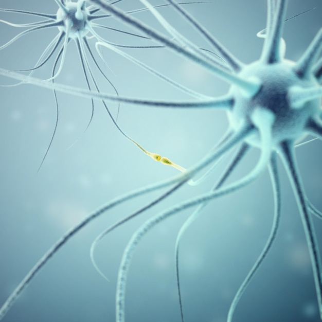 Neurons transmission signals in the head Premium Photo