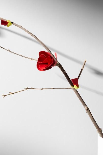 Новый год китайский 2021 маленький красный цветок Premium Фотографии