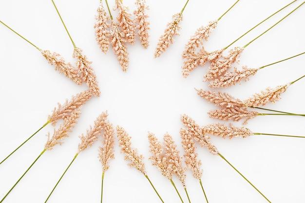 Bella composizione realizzata con foglie di grano su sfondo bianco Foto Gratuite