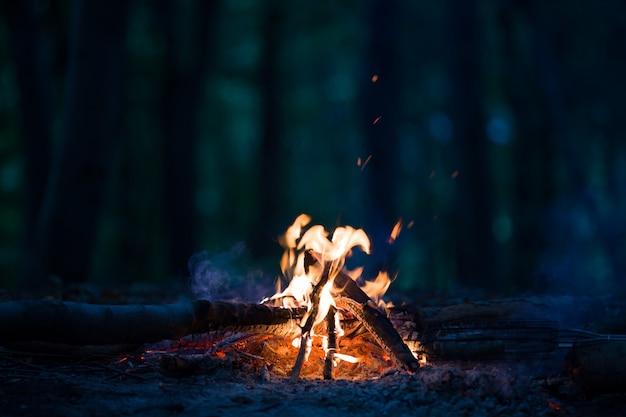 夜の夜のキャンプファイヤー | 無料の写真