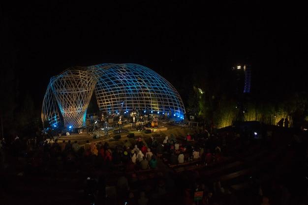 Night music festival Premium Photo