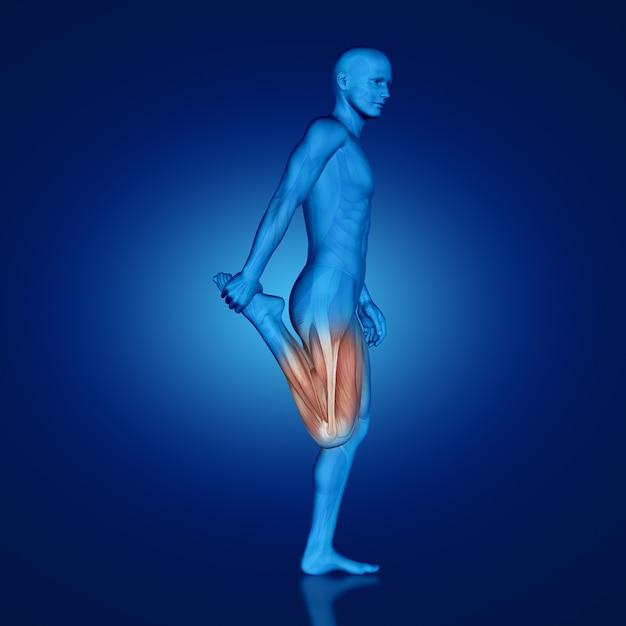 「大腿四頭筋ストレッチ」の画像検索結果