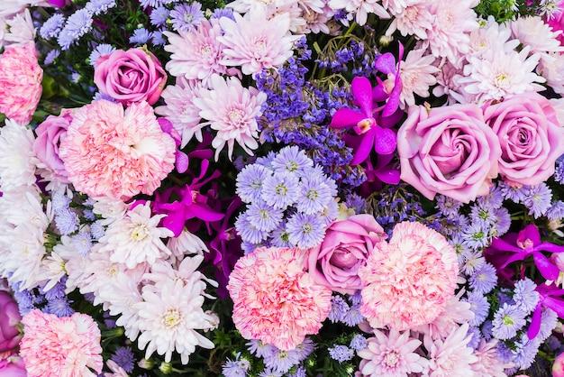 ピンクと紫の花 無料写真