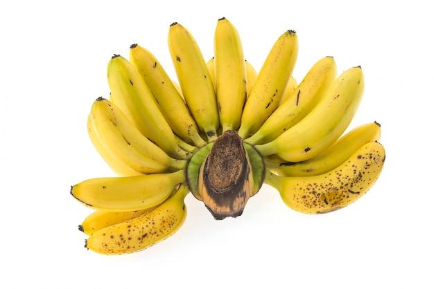 バナナパターンベクトル 無料写真