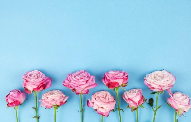 Ряд розовых цветов, расположенных на синей поверхности Бесплатные Фотографии
