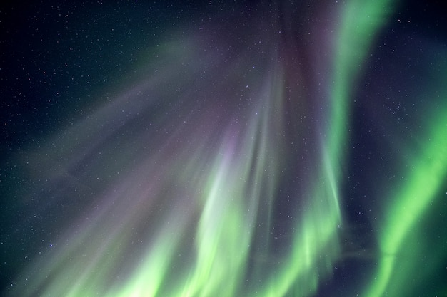 Northern lights, aurora borealis explosion on night sky Premium Photo