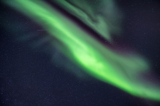 Northern lights, aurora borealis with stars in the night sky Premium Photo