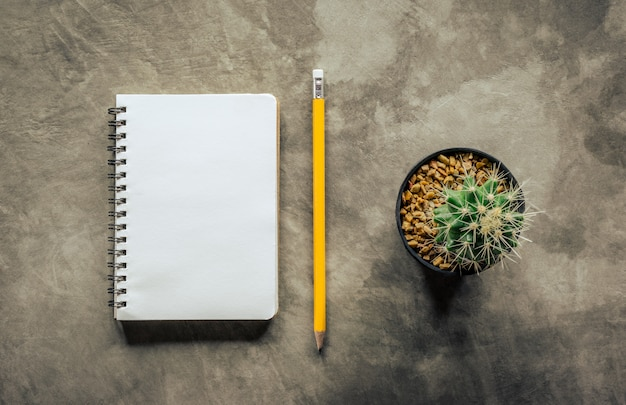 Notebook pencil and cactus on cement board view from above. Premium Photo