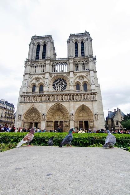 Notre dame cathedral in paris, france Premium Photo