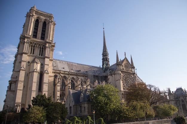 Notre dame de paris cathedral.paris. france Premium Photo