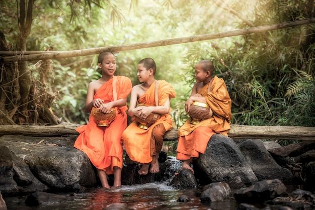Novice monk in thailand Premium Photo