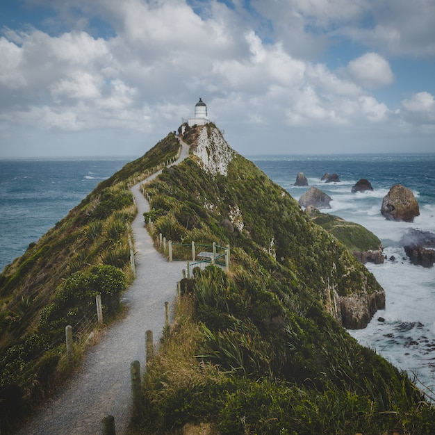 ナゲットポイント灯台トレイルとニュージーランドのオタゴの海の岩 Premium写真