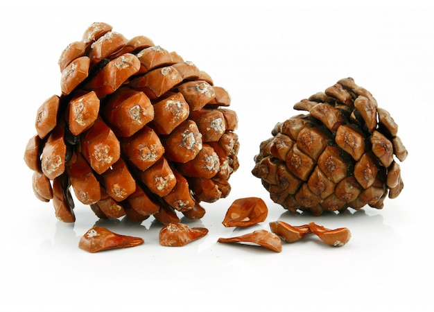 Nuts and cone of siberian pine isolated on white Premium Photo