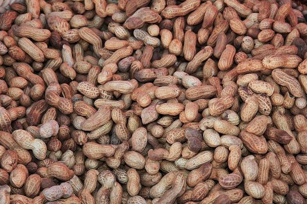 Nuts on the local market in sahara desert Premium Photo
