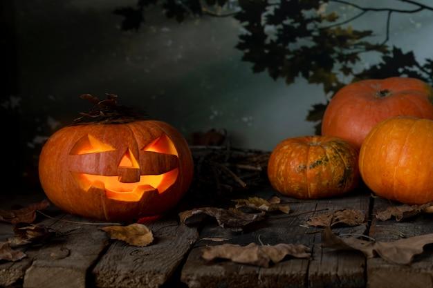 夜の神秘的な森で輝くハロウィーンのカボチャ。ジャックoランタンの恐怖。 copyspaceとハロウィーンデザイン。 Premium写真
