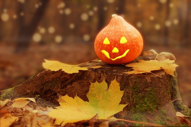 Хэллоуин тыква (джек o фонарь) в лесу с листьями в тумане. Premium Фотографии