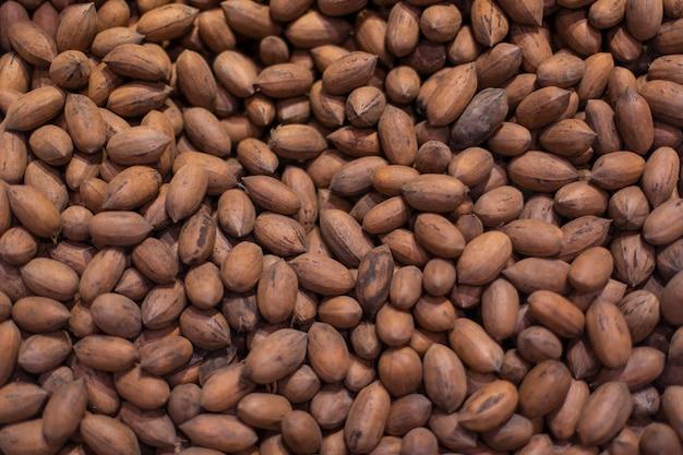 食料品の在庫でオークの木のコーン 無料写真