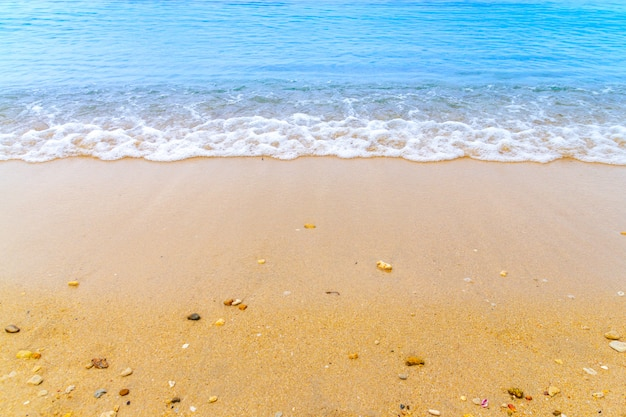 69d24e3c44 Ocean blue wave on sandy beach with sea shell summer background ...