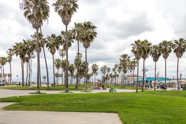 Ocean front walk of venice beach in los angeles, famous beach in california Premium Photo