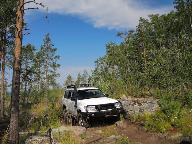 Offroad adventure on toyota in the forests of karelia Premium Photo
