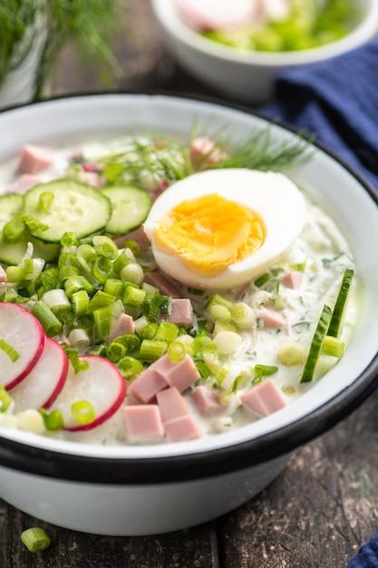 オクローシカ。ロシア料理の伝統的な料理。きゅうり、大根、卵、ディル入りの夏の軽い冷たいスープ。素朴なスタイル。閉じる。 Premium写真