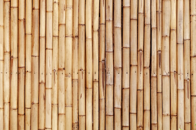 Old bamboo fence wall for nature background and web design Premium Photo