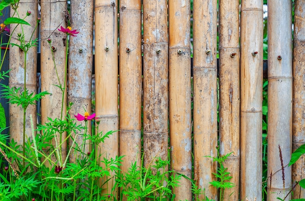 decorative bamboo fence stock photo image of ancient.htm old bamboo fence with flower in nature premium photo  old bamboo fence with flower in nature