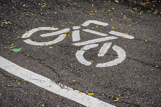 Old bike path in the autumn park Premium Photo